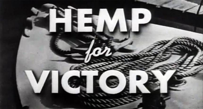 Image tirée du video Hemp for Victory