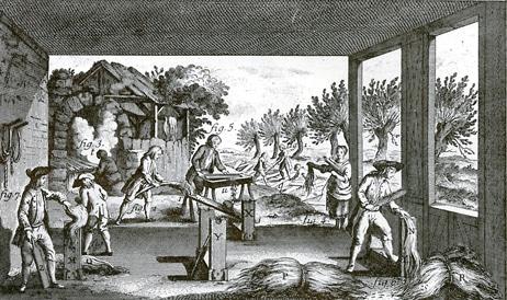 Image sur le chanvre tirée de l'encyclopédie Diderot et d'Alembert